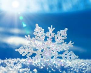 Real_snowflake-4